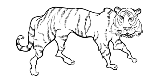 Easy tiger emilymade after many questions about who this tiger is friendly scary moving sleeping waking dreaming he emerged publicscrutiny Images